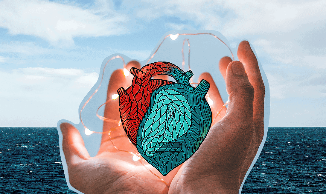 Supporting The Heart Healthy: Using CBD Product for Heart Failure