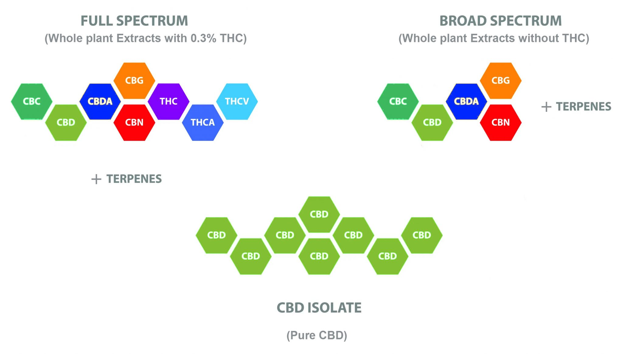 Differences between different types of CBD extract: Full Spectrum Broad Spectrum and Isolate