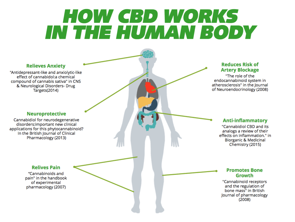 cbd pills benefits