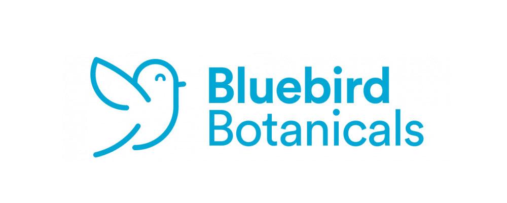 Bluebird Botanicals CBD Oil Reviews 2021