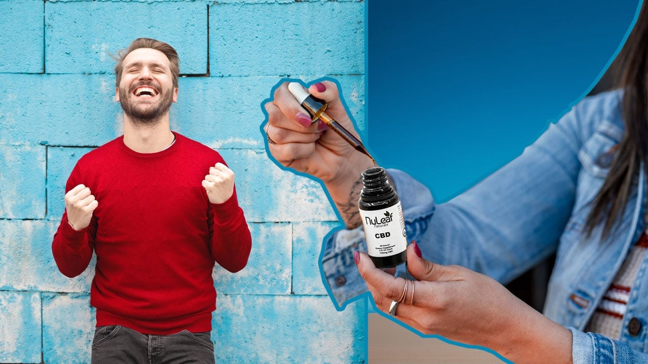 A Roundup of the Best CBD Products for Stress Relief and Mood Support