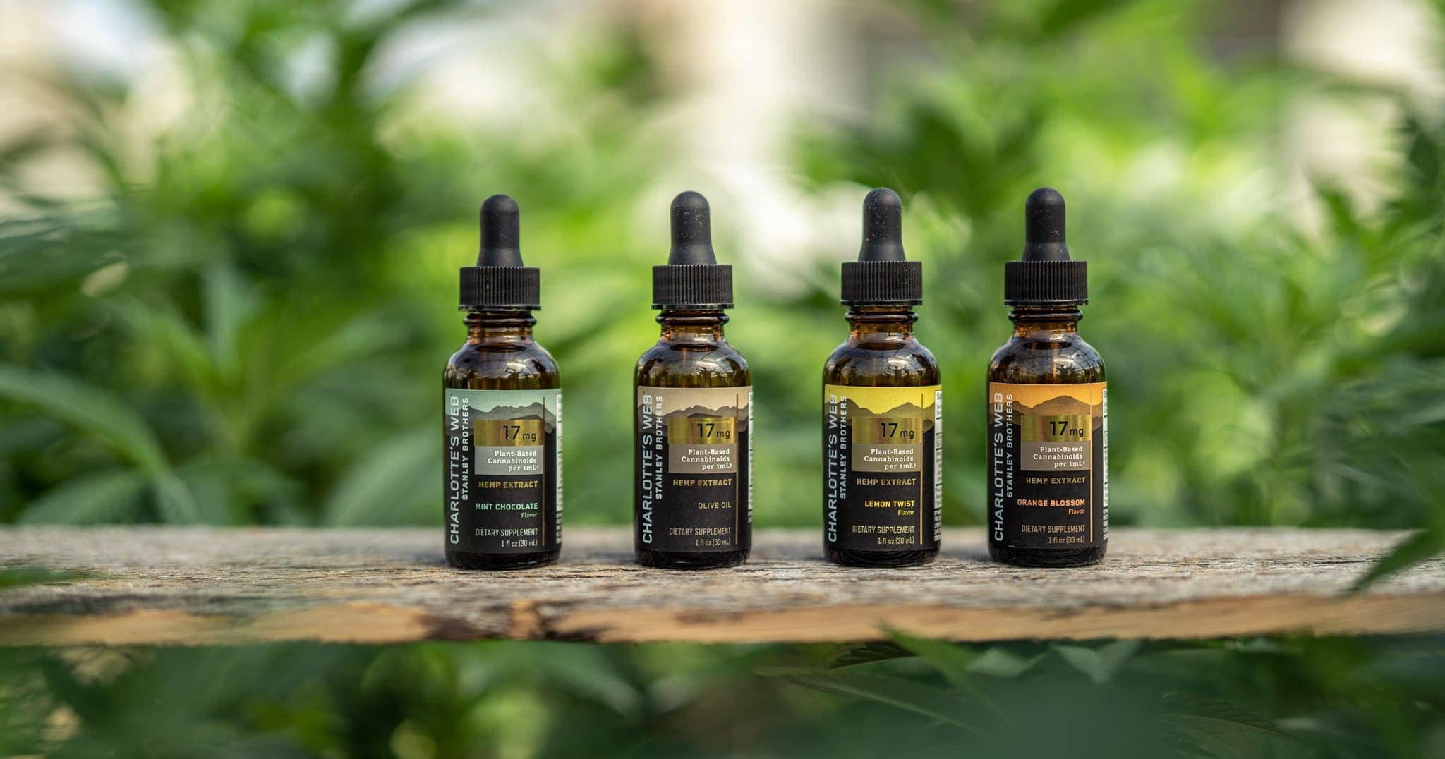 Charlotte's Web CBD oils and tinctures