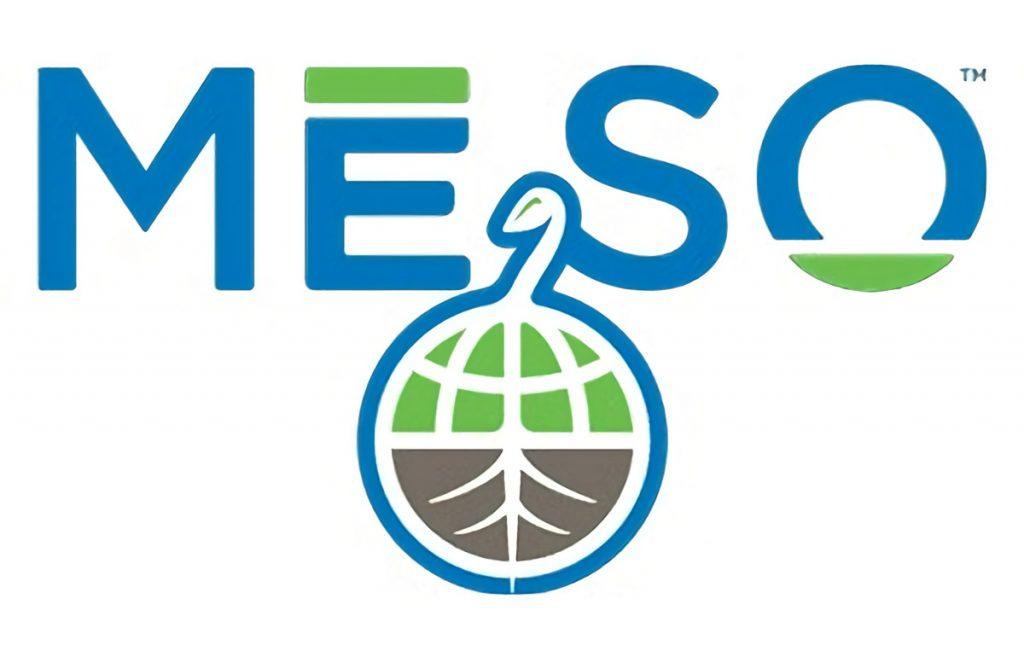 Meso Healthy CBD Logo