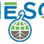 Meso Healthy CBD Brand Logo