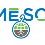 Meso Healthy CBD Oil Product Reviews