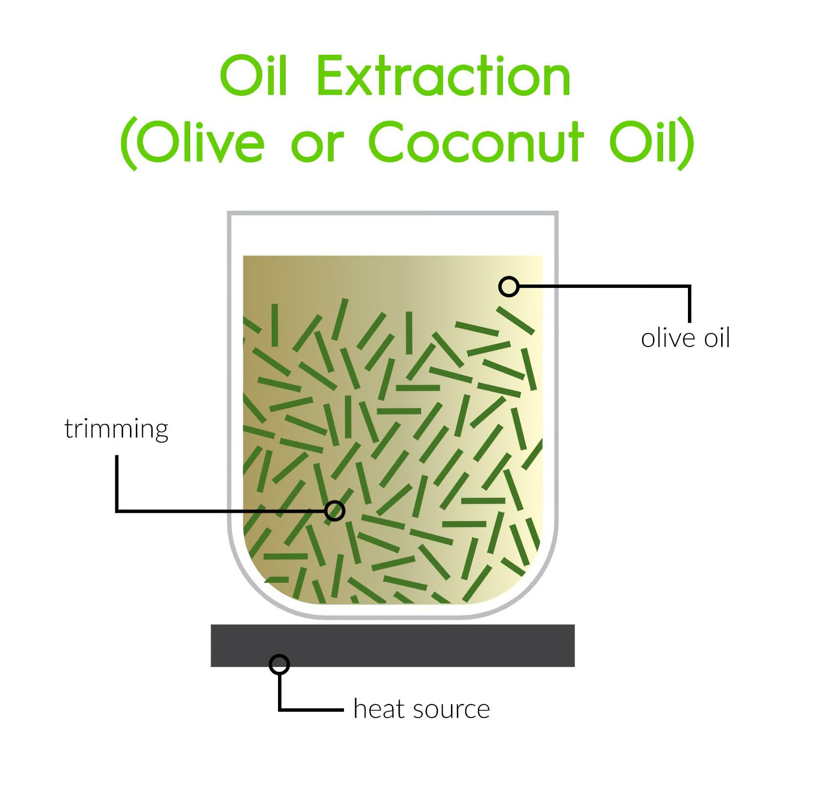 Oil extraction Using Olive or Coconut Oil