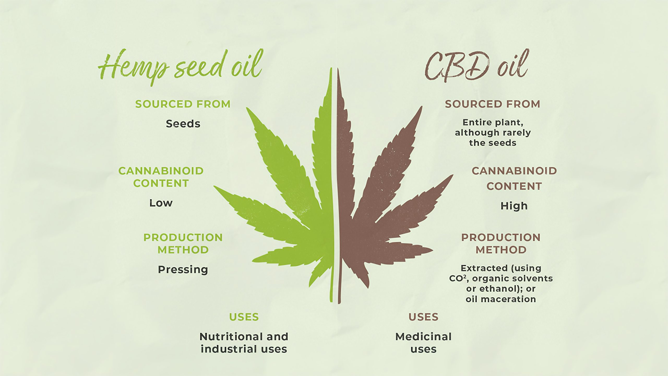 Hemp Seed Oil vs CBD Oil: Main Differences