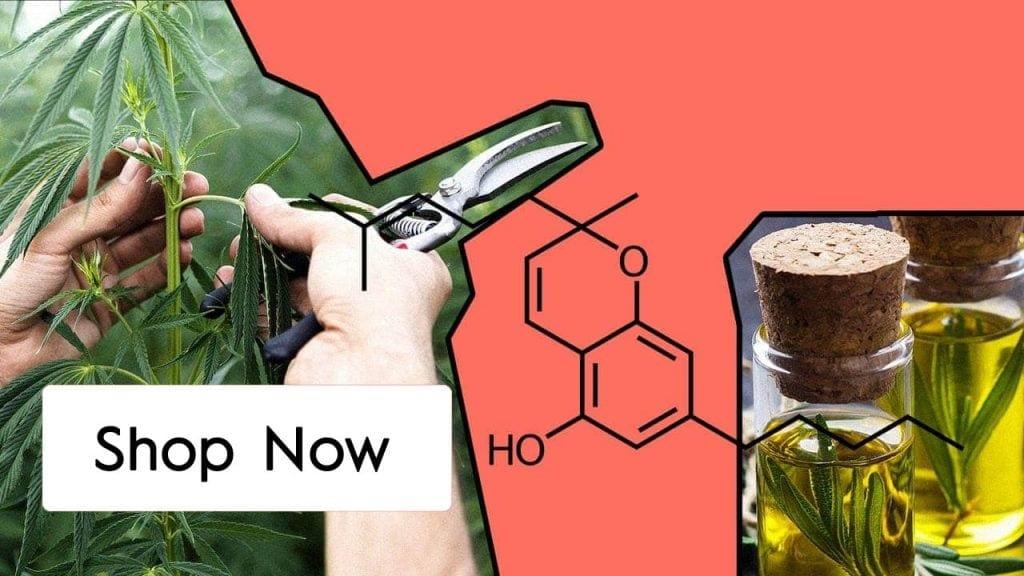 Shop CBC Oil Online