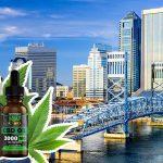 Where to Buy CBD Oil in Florida