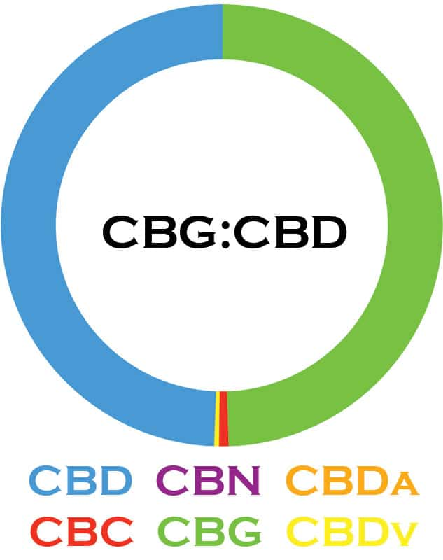 3Chi, CBG-CBD Oil Tincture, Broad Spectrum THC-Free, 1oz, 1000mg CBG and 1000mg CBD 2